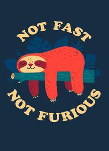 Not Fast, Not Furious