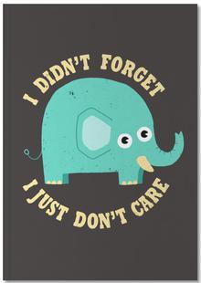 An Elephant Never Cares
