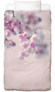 Pastel Rose Cherry II