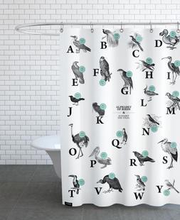 alphabet of birds, animal ABC