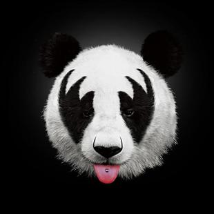 Kiss Of A Panda