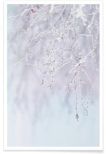 Frozen Twigs Pastel