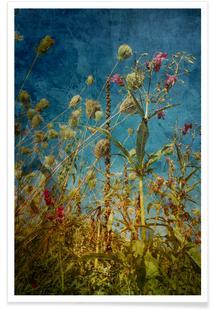 Heat Flowers