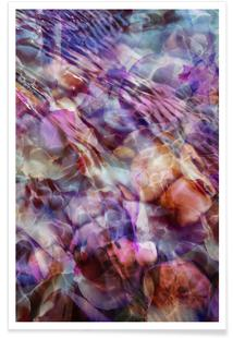 Purple Tide
