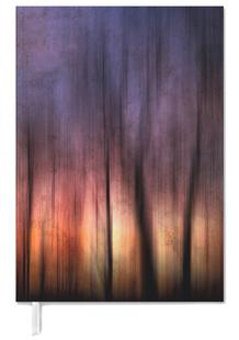 A Blurred Sunset Preview