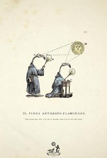 The pious anthropo-flamingos