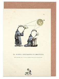 The pious anthropo-flamingos