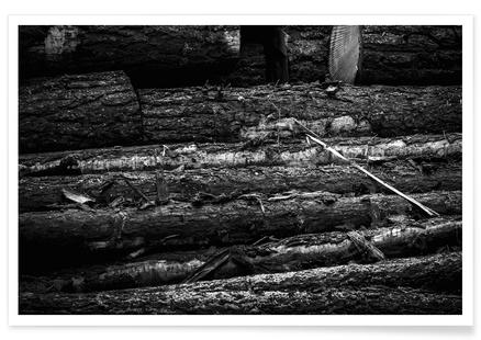 The Logs