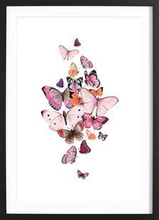 Schmetterlinge Rosarot