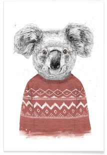 Winter Koala Red