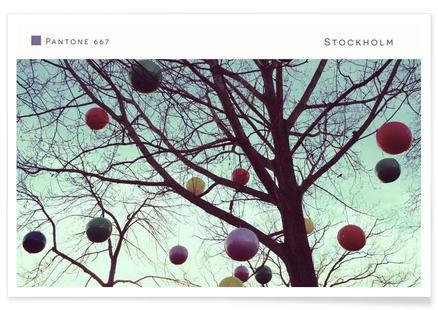 Stockholm Pantone 667