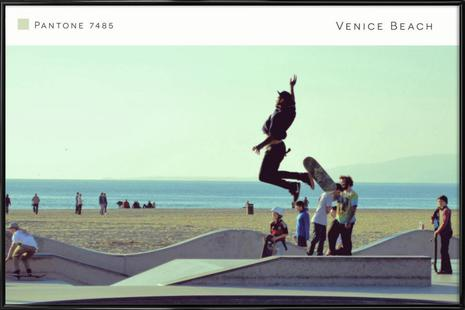 Venice Beach Pantone 7485