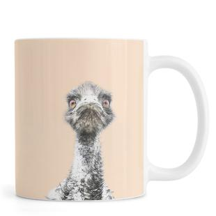 Orange Emu
