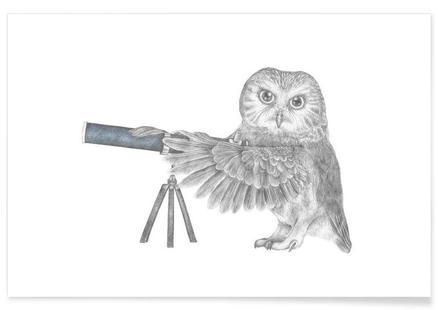 Pearl Papineau Saw Whet Owl