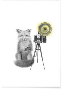 Quinn Bancroft Fox