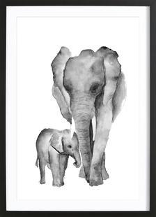 Elephant Mama