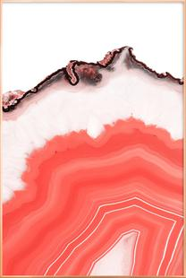 Living Coral Agate