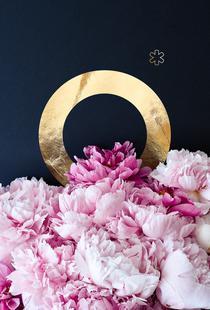 Flower Alphabet O