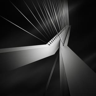 Metropolis Erasmusbrug