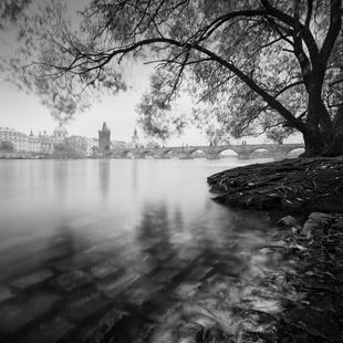 Vltava Study - Autumn Leaves, Prag