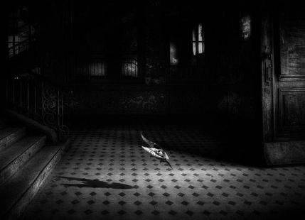 Chance encounter - Holger Droste