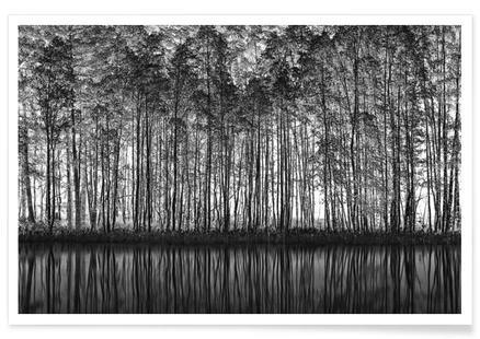 Pointillism_Nature - Roswitha Schleicher-Schwarz