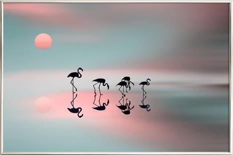 Family flamingos - Natalia Baras