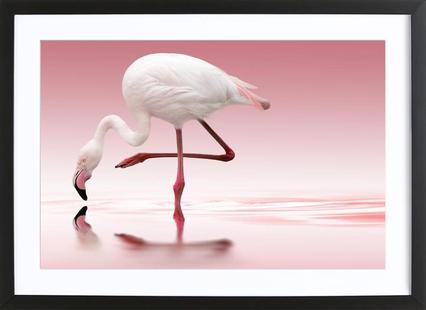 Flamingo Doris Reindl