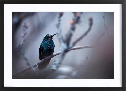 Electrical Blue - Fabien Bravin