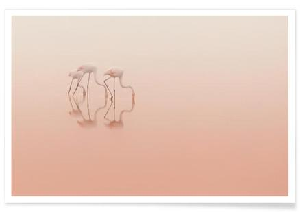 Pink Silence... - Natalia Rublina
