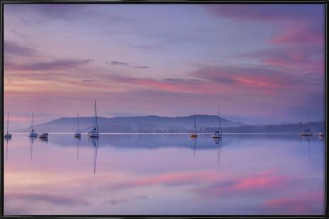 Pink Morning - Margarita Chernilova