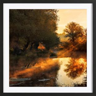 When Nature Paints With Light I - Leicher Oliver