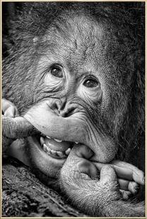 Big Smile.....Please - Angela Muliani Hartojo