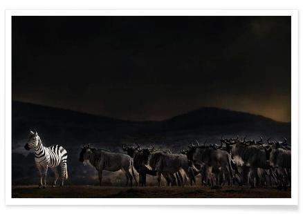 An Evening in Kenya - Piet Flour