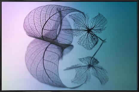 Story of Leaf and Flower - Shihya Kowatari