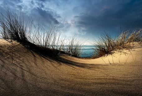 Dunes........... - Wim Schuurmans