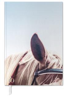 Horse III