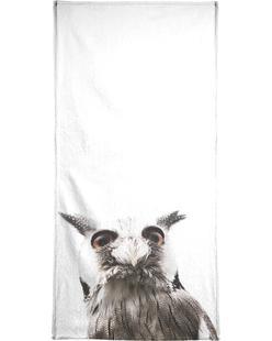 Lil Owl