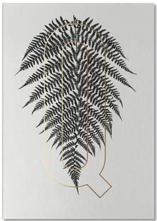 Plants Q