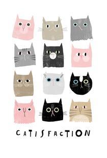 Catisfaction 1