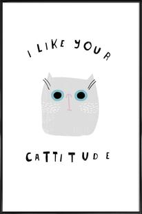 Catisfaction 6
