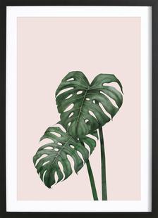 Tropical No. 9