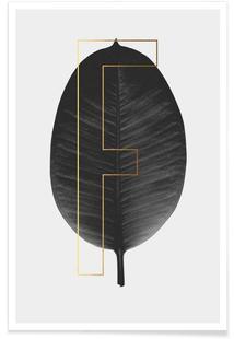 Plants F