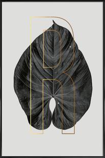 Plants R