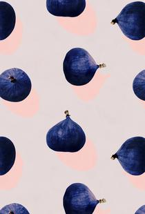 Fruit 16