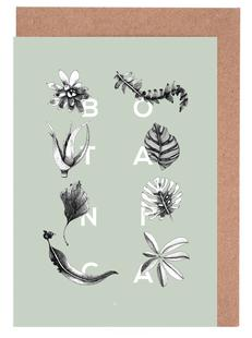 Botanica Letters