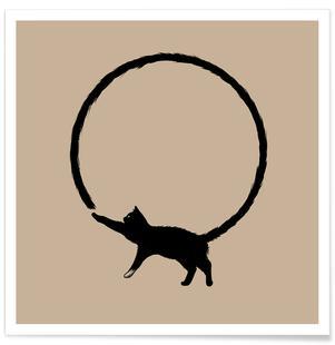 Cat Circle