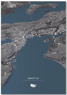 Seattle Color City Map