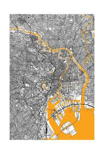 Orange Infusion In Tokio