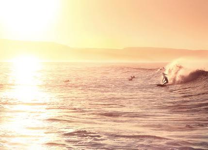Cut The Wave x Anchor Point